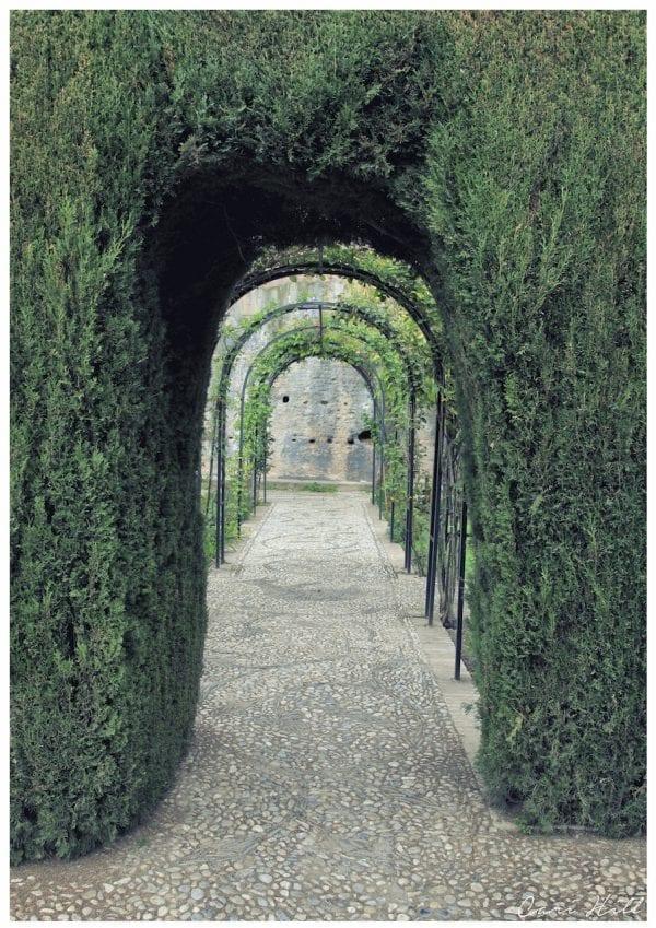 Artistic colour photo print of the view through a green corridor in the Alhambra in Granada, Spain.