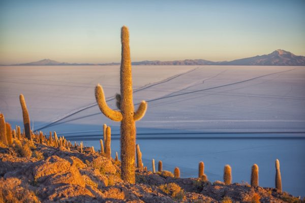Artistic colour photo print of the salt flats from Inkawasi in Uyuni, Bolivia at dawn.
