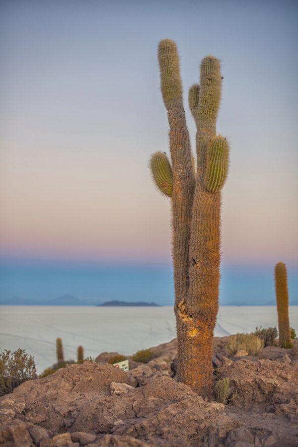 Artistic colour photo print of the salt flats from Inkawasi in Uyuni, Bolivia at dawn.