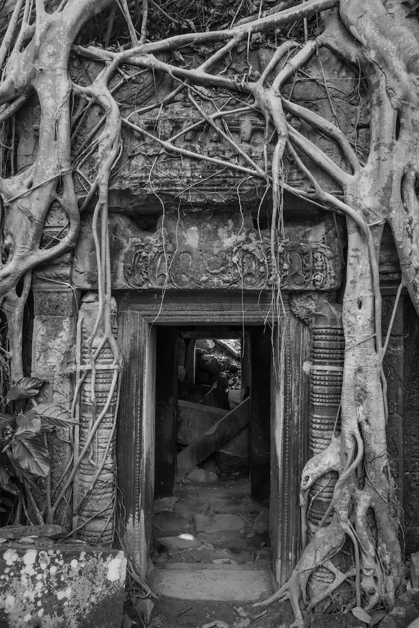 Angkor Wat B&W Tree Root Entrance