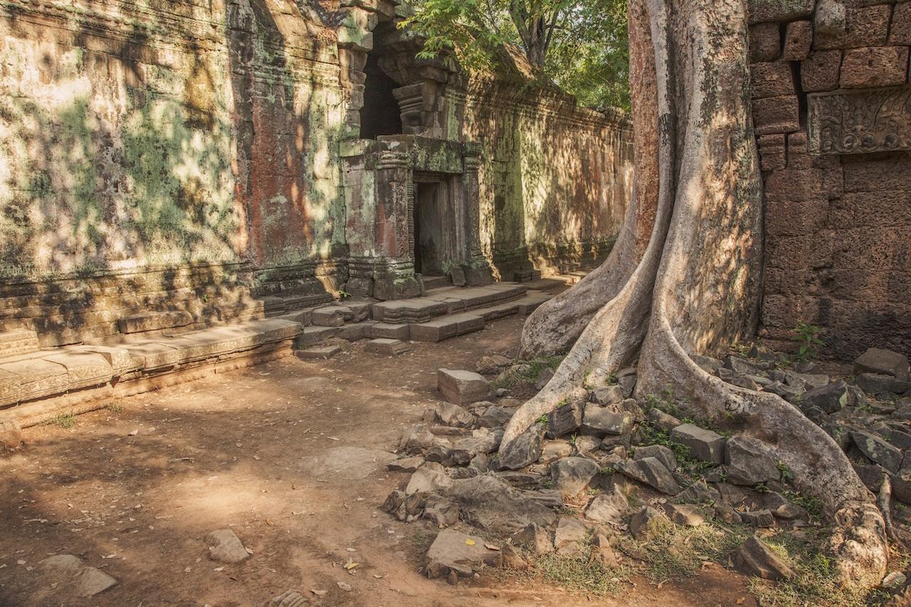 Angkor Wat Dappled Sunlight